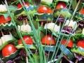 Raznjic salata2-kackavalj,sremus,ceri paradajz,krastavac