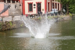 užice skokovi u vodu 16. jul 2017 (164)