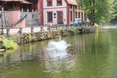 užice skokovi u vodu 16. jul 2017 (410)