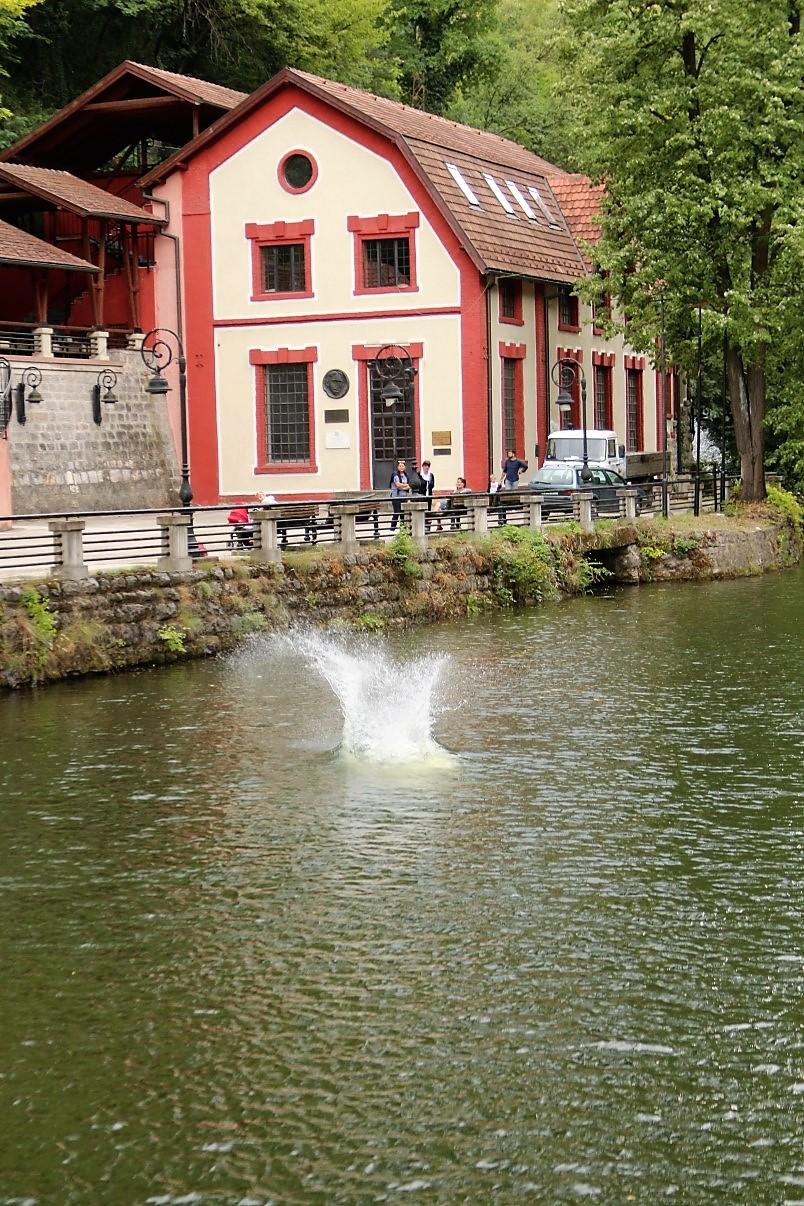 užice skokovi u vodu 16. jul 2017 (146)
