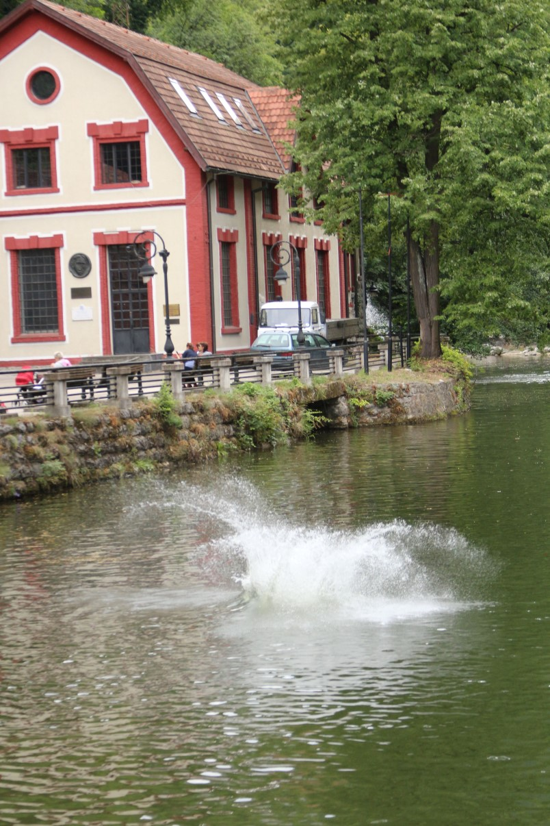 užice skokovi u vodu 16. jul 2017 (269)