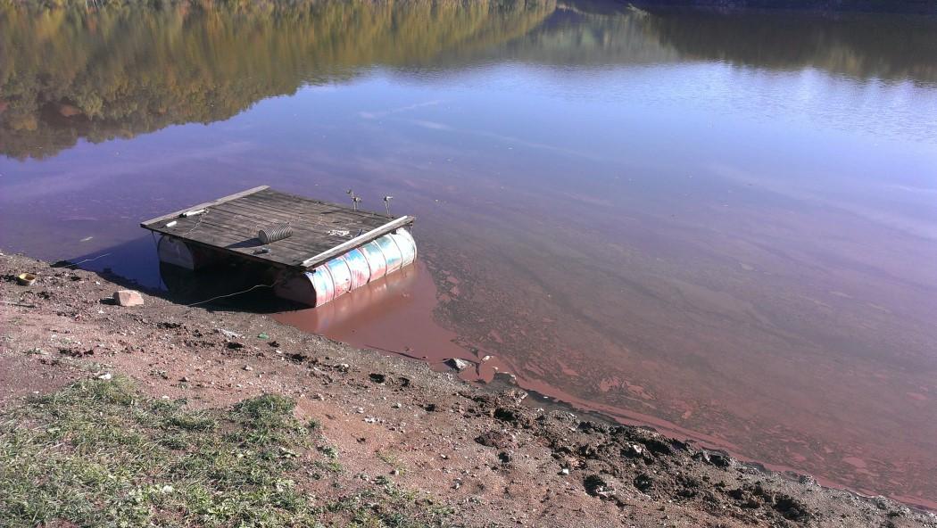 cijanobakterije jezero vrutci srbija