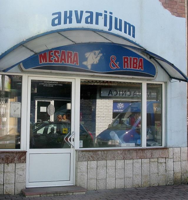akvarijum