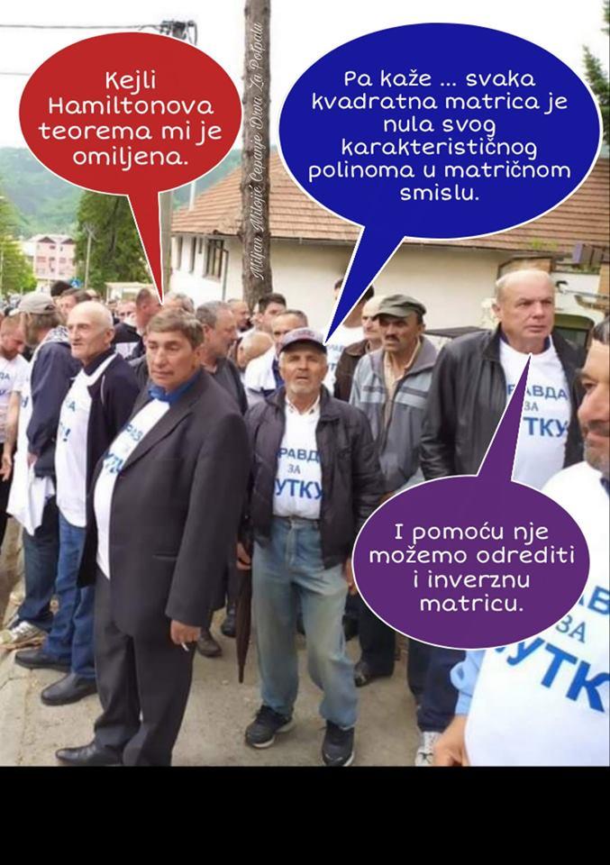 Две недеље српске збиље